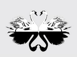 エスコートクラブBLACK SWAN